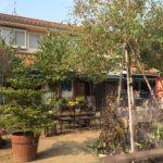 吉見町のカフェ 出会いパーティー