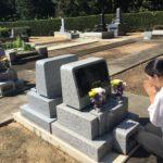 レンタル墓 (これだけは知っておきたい 5つの特性)