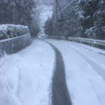 朝から雪かき